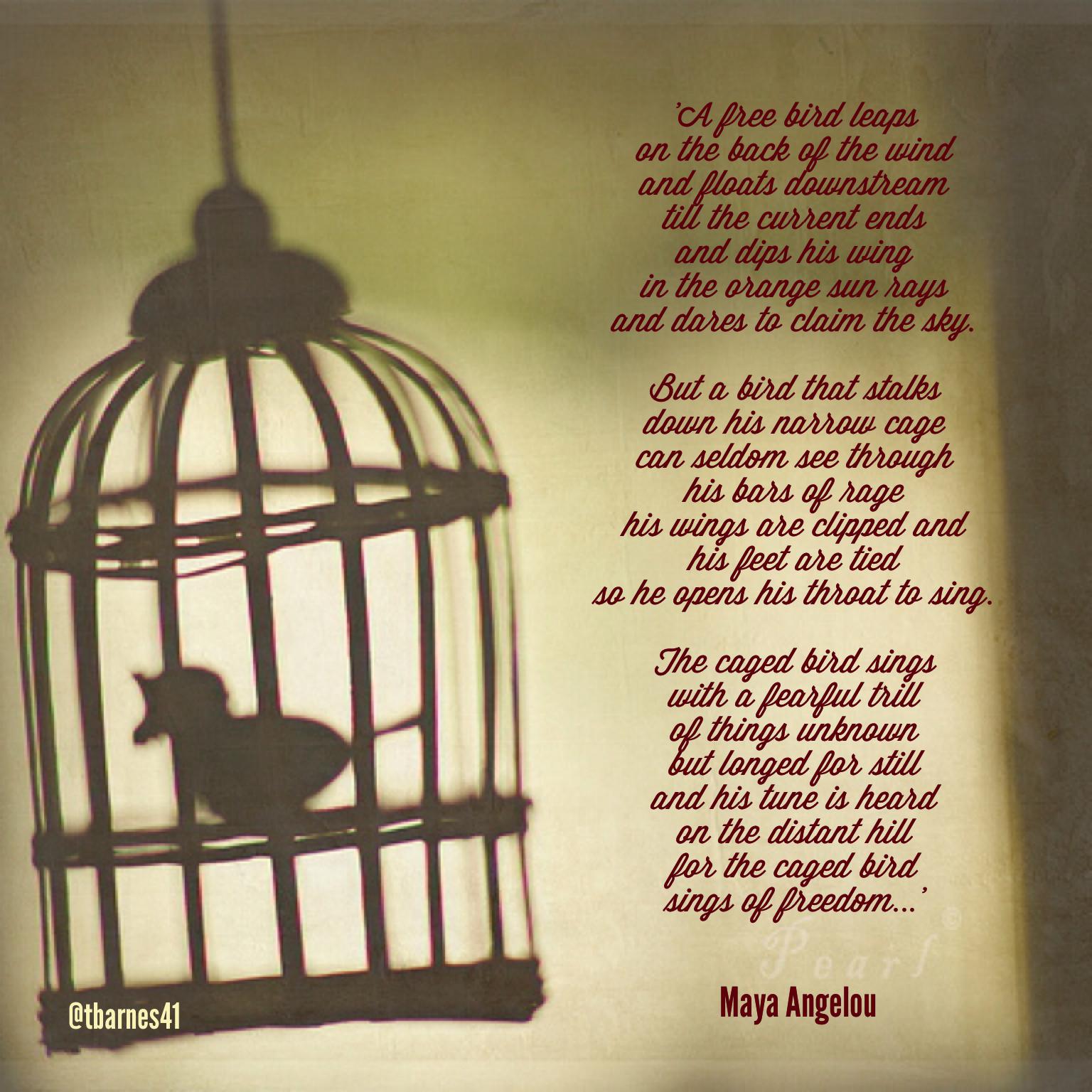 the different perspectives on the caged birds thoughts in the poems sympathy by paul laurence dunbar Poetry of liberation home documents poetry of liberation please download to view.